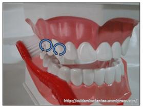 Dentista para idosos