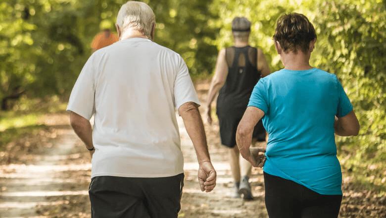 Obesidade em idosos